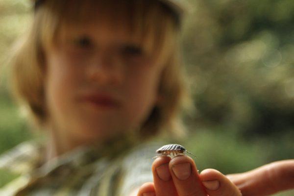 Träger Naturkindergartens Pfäffingen die Goldammern